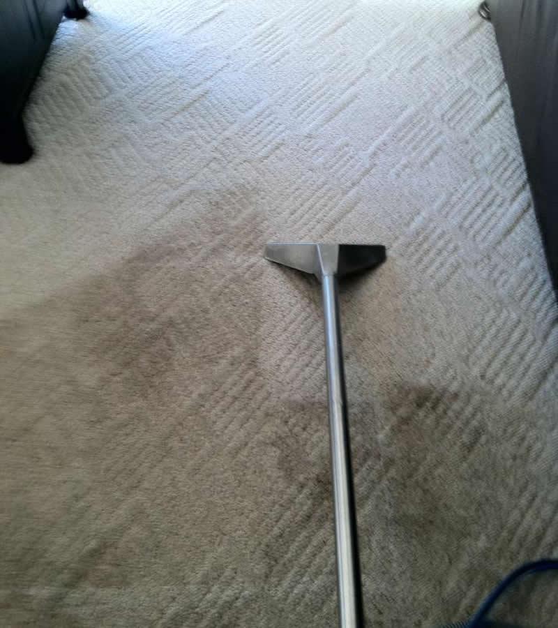 Amazing clean carpet